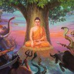 Le yoga et la méditation augmentent-ils la confiance en soi ?